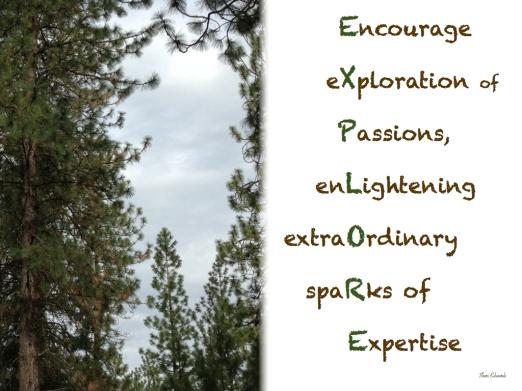 094_2013_explore.001